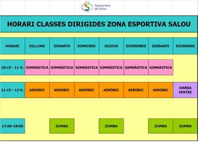 Horari classes dirigides Zona Esportiva de Platja.jpg