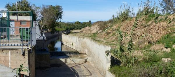 Comença l'esbrossada i l'eliminació de canyes del barranc de Barenys per la seva conservació i manteniment