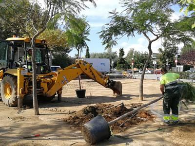 L'Ajuntament de Salou reordena la zona verda entre el c/de l'Arquitecte Ubach i el passeig 30 d'Octubre reposant arbres i vegetació