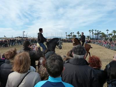 cavalls.JPG
