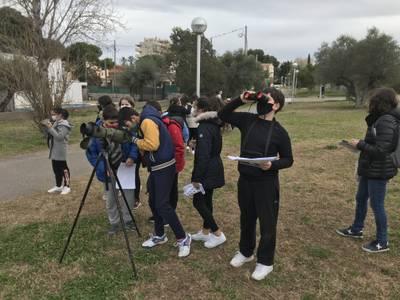 L'Ajuntament de Salou promou l'activitat d'observació dels moixons per als estudiants del municipi