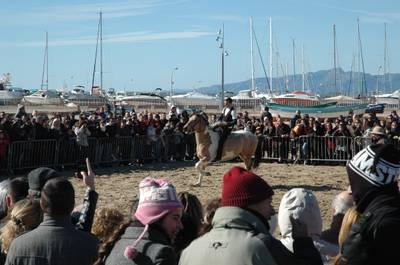 cavalls_2.JPG