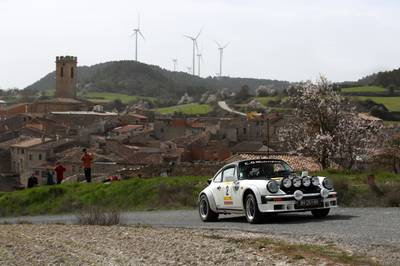 RallyCatHistRACC2.jpg
