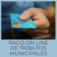 Pago on line de tributos municipales