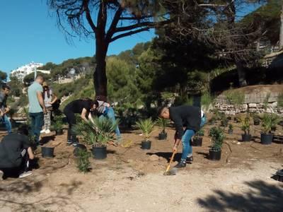 El Ayuntamiento de Salou repuebla el entorno natural de la Platja Llarga