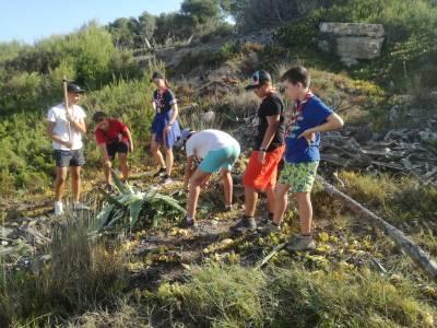 El Grupo Scout Águilas de Alicante limpia los espacios verdes públicos del Cap Salou de la planta invasora uña de gato
