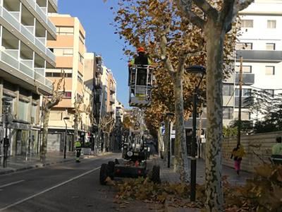Salou inicia la campaña de la poda de más de 10.000 unidades vegetales de calle del municipio
