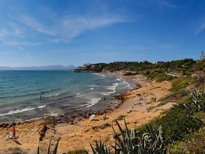 La Universidad Politécnica de Cataluña redactará un estudio técnico sobre la afectación de las playas del municipio