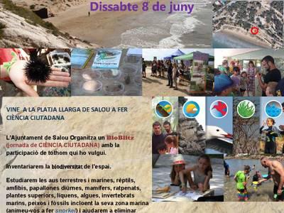 Salou organiza un nuevo Bioblitz en la playa Llarga para difundir y conocer la biodiversidad del entorno