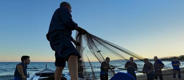 La Calada de las Mallas de San Pedro demostrará el arte de la pesca tradicional en la playa de Poniente