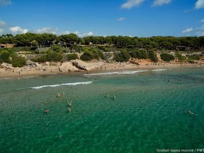 Salou celebrará el Día Mundial del Medio Ambiente con dos limpiezas en las playas del municipio, durante este fin de semana